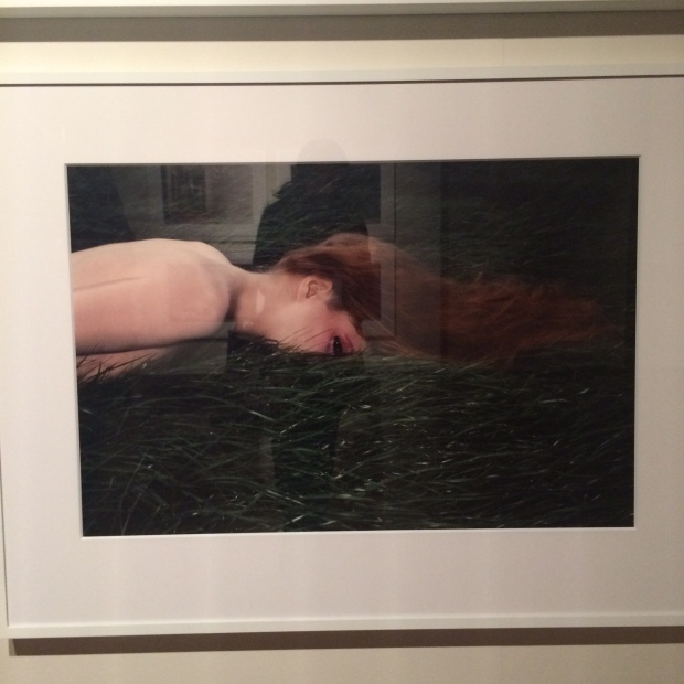 Woman head in grass Guy Bourdin red hair